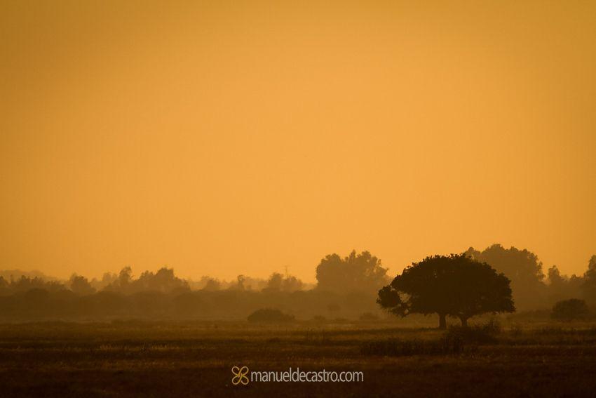manueldecastro.com-paisajes-2