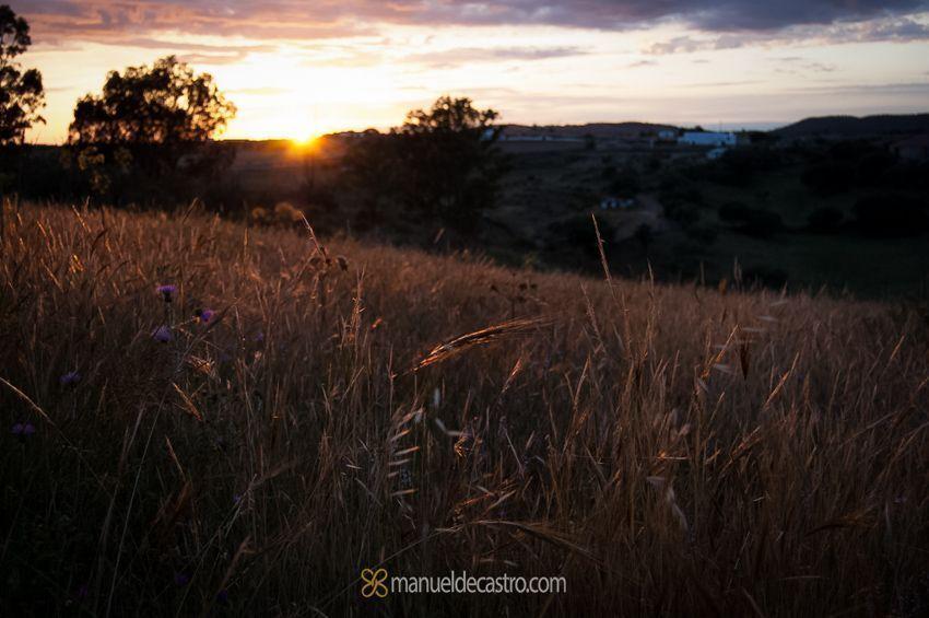 manueldecastro.com-paisajes-5