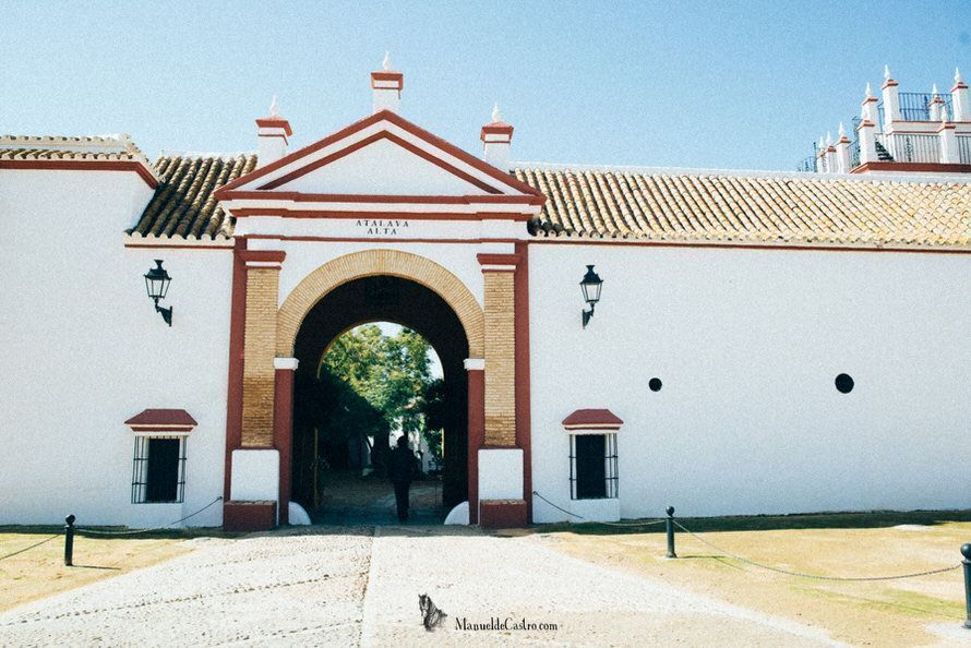 boda-hacienda-la-atalaya-alta-sevilla-044