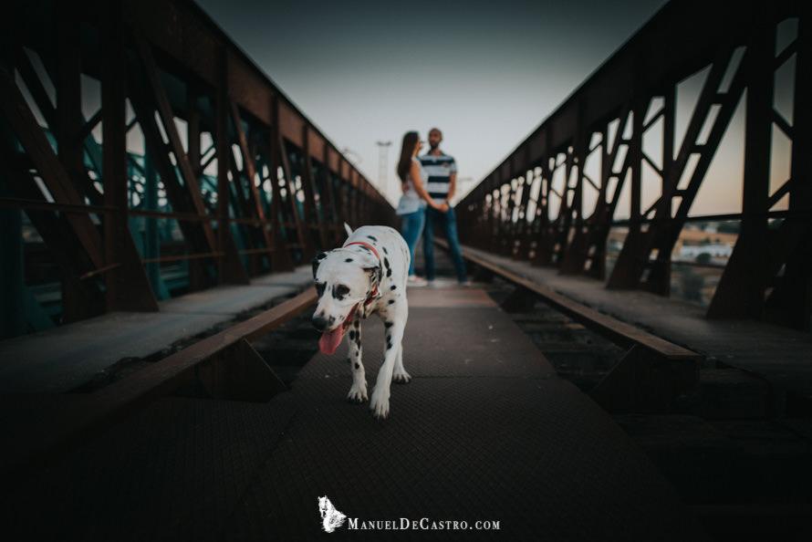 preboda en Puente Genil. Manuel de Castro. Fotógrafo de bodas